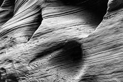 Zion National Park - Narrows (Slobodan Miskovic) Tags: zion nationalpark narrows nikond750 blackandwhite landscape nature nikon2470mmf28 nikon texture