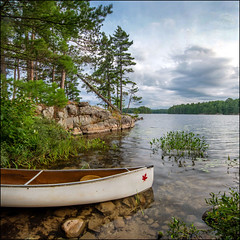 Smokey Lake (Rodrick Dale) Tags: smokey lake ontario canada canoe pine trees water rock weed