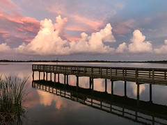 Far Side of Lake Maggiore (Beth Reynolds) Tags: lake sunset stunning clouds summer florida dock reflection reeds fresh water stpetersburg lines nature environment