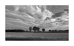 Mein Flachland... (Babaou) Tags: deutschland niederrhein kreiskleve kevelaer nrw sw bw nb flachland dxopl wolken