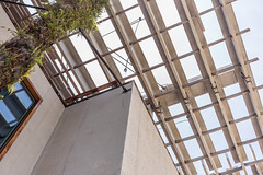 IMG_3716.jpg (patrick t ngo) Tags: architecture downtownmiami herzogdemueron miami museum museumpark pamm pérezartmuseummiami