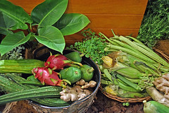 Community Gardening (chooyutshing) Tags: communitygarden edibles singaporegardenfestival2018 supertreegrove gardensbythebay baysouth marinabay singapore