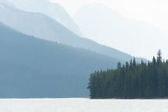 Maligne (_sjg_) Tags: alberta canada jaspernationalpark malignelake northamerica