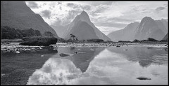 Mitre Peak (V) (J-o-h-n---E) Tags: nz newzealand newzealandsouthisland fiord fiordland milfordsound mitrepeak mountains foreshore landscape sky bw monochrome reflection pools water driftwood