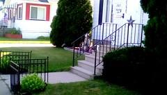 Neighborhood - SFS (Maenette1) Tags: houses stairs lawn neighborhood menominee uppermichigan saturdayforstairs flicker365 allthingsmichigan absolutemichigan projectmichigan