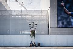 2018 (Luca * Rossi) Tags: lucaxrossi padova street streetphotography streetcolor streetphoto streetphotographers pratodellavalle