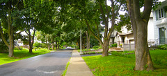 """New Urban Street - Canopied, charming and Bad (UrbanGrammar) Tags: urban """"new urban"""" urbanism streets traffic """"pedestrian realm"""" """"fused grid"""" zones"""" """"main street"""" culdesac loop neighbourhood """"street patterns"""" """"healthy urbanism"""" mobility accessibility tranquility safety delight infrastructure connectivity """"urban park"""" carfree adaptation mixeduse ottawa"""