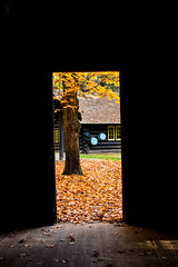 IMG_7032 (BearBear Photography) Tags: michigan hartwickpinesstatepark autumn fall autumnleaves autumncolor fallleaves fallenleaves nature cabin logcabin rustic loggingcamp wood woodfloor tree lightandshadow lightanddark