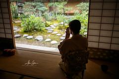 The Tea Ceremony (Miyajima, Japan 2015) (Alex Stoen) Tags: alexstoen alexstoenphotography autumn fall geotagged leicamptyp240 ngexpeditions natgeo nationalgeographicexpeditions summiluxm35mm travel vacation