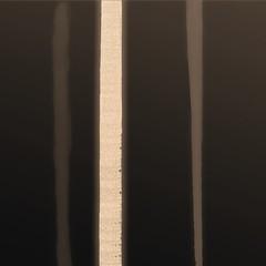 La betulla (Luciano Cozzi) Tags: linee lc astratto
