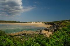 Sand, Sea and Sky (suerowlands2013) Tags: crantock westpentire newquay northcornwall nationaltrust beach sanddunes ferns sand clouds bluesky sea waves cliffs holiday summer sunshine summerbreeze