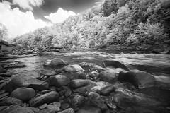 Cheat Canyon IR (DRCPhoto) Tags: irconverteddslr canon5d digitalinfrared sigma1224mmdghsm cheatriver cheatcanyon westvirginia