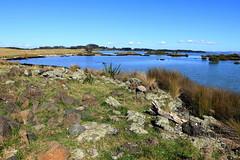 IMG_9183 (christineNZ2017) Tags: ambury regional park amburypark birdsanctuary birdlife bird sanctuary southauckland auckland newzealand winter