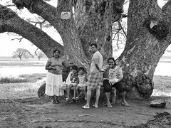 P1080262 (ernsttromp) Tags: srilanka panasonic lumix dmcfz1000 fz1000 people portrait blackandwhite 4x3 2018 lake tissa family monochrome trees bw