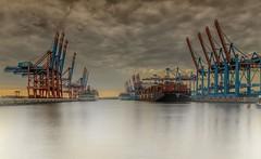 Waltershof (fotoerdmann) Tags: europa elbe kran ship shipping schiff canon wasser waterkant farben colour burchardkai hafen hamburg fotoerdmann waltershof