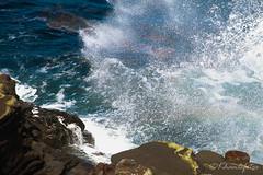 Splash! (KHanFotos) Tags: photography pictures photo beach lajolla sandiego california rock wave ocean summer2018 summer summerfun blue