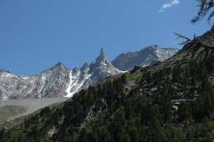 Aiguille de la Tsa (bulbocode909) Tags: valais suisse arolla valdhérens aiguilledelatsa montagnes nature forêts arbres neige paysages vert bleu
