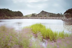 Crag and pond (digiphill) Tags: 2018 august cawfields cawfieldsquarry hadrianswall northumberland northumberlandnationalpark summer longexposure beautifulearth