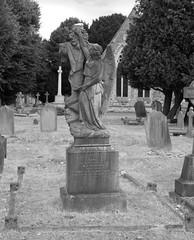 The grave of Topsy Harrison (IanAWood) Tags: bringoutthedead cemeteryclub citiesofthedead graveyards headstonehunting lbofrichmond londonsdead londonsnecropolis londonsvictoriancemeteries nikkorafs58mmf14g nikondf twickenham twickenhamburialboard twickenhamcemetery walkingamongstthedead walkingwithmynikon