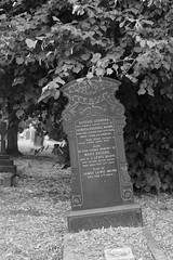Grave of Lewis and Eugenie Mann (IanAWood) Tags: bringoutthedead cemeteryclub citiesofthedead graveyards headstonehunting lbofrichmond londonsdead londonsnecropolis londonsvictoriancemeteries nikkorafs58mmf14g nikondf twickenham twickenhamburialboard twickenhamcemetery walkingamongstthedead walkingwithmynikon