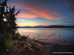 Twilight Delights (George Stenberg Photography) Tags: washingtonstate pacificnorthwest hoodcanal sunset twilight clouds water daisies