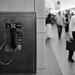 Penn Station Payphone