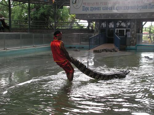 В пащу крокодилу Паттайя Таїланд Thailand InterNetri 29