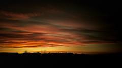 From Iceland. (Tóta. 27.12.1964.) Tags: sunset clouds sky trees iceland ísland