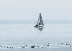 Lido degli Estensi (Vanni Lazzari - VL) Tags: lidodegliestensi barca vela comacchio