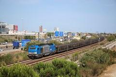 Diésel 335 COMSA. (Danilotrece) Tags: diésel335 comsa vía portaatos tren gefco euro4000 train raíl 335
