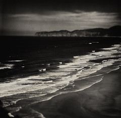 Translating the language of the ocean into the vocabulary of the Hasselblad Flexbody (Zeb Andrews) Tags: hasselbladflexbody ilfordfp4 tiltshift capelookout capekiwanda oregoncoast oregon zaahphoto mediumformat 6x6 pacificnorthwest pacificocean ilford experiments scannedatbluemooncamera nikoncoolscan9000 niksilverefex