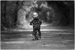 No pedals.  No problem. (westcoastcaptures) Tags: boy toddler zachary bb8 monsters monsterjacket jacket helmet bike strider pushbike trail monochrome blackandwhite bokeh thindof sonya99ii minolta8020028apohsg