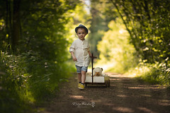 On a walk with my favorite bear (Kinga Pakula PHOTOGRAPHY) Tags: petitgarcon littleboy walk road sun sunribbons childphotography bear choldportrait green wood forest foret childphotographyluxembourg captureyourdreamsphotographyluxembourg kingapakulaphotography