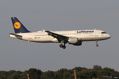 Airbus A320 -211 LUFTHANSA D-AIQF 216 Bastia juillet 2018 (Thibaud.S.) Tags: airbus a320 211 lufthansa daiqf 216 bastia juillet 2018