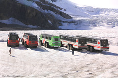 Athabasca Glacier, Columbia Icefied, Icefields Parkway, Alberta,Canada (Black Diamond Images) Tags: athabascaglacier columbiaicefield jaspernationalpark glacier icefieldsparkway alberta canada scenictours scenic 2012 mountains mountain ice banfftojasper landscape sky snow mountainside travelalberta albertatravel albertaholiday holidayalberta