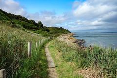 Mourne Coastal Path (Eskling) Tags: coast coastal path trail walk mourne codown northern ireland sea grass blue green