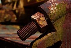 Rusty Nut (StephenReed) Tags: rustynut metal rust paint chipedpaint abstract art abstractart mold shadows nikond3300 stephenreed