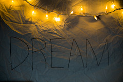 DREAM (louie jr) Tags: musuem art baseball bikes green ceiling station winter jersey train golden sunrise hour nature trees dogs puppies measure tree roots leaves wind coffee sports cars cool sick dawg film 35mm cities dallas memphis philadelphia