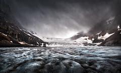 Life on a Glacier (brian.pipe) Tags: nikon d500 sigma 17 50 athabasca glacier jasper banff national park alberta canada