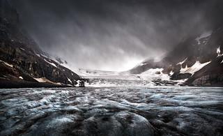 Life on a Glacier