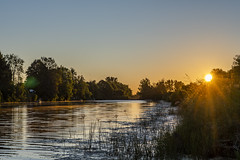 Where the Wild are Strong (Kevin Tataryn) Tags: canal river mist morning birds sunrise golden light landscape early canada nikon d500 1755
