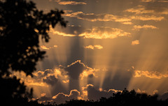 Sunrays (donnasmith13) Tags: beam beams beautiful blue cloud clouds cloudscape cloudy color countryside dusk evening glow gold heaven heavenly horizon landscape light outdoor ray rays raysoflight rural scene scenic sea sky skyevening skyline summer sun sunrays sunbeam sunbeams sunburst sundown sunlight sunny sunray sunset sunshine twilight view yellow