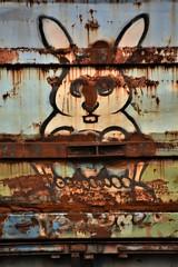 Old Rusty Rabbit (rabidscottsman) Tags: scotthendersonphotography rabbit whiterabbit rust paint boxcar rr railroad graffiti railroadgraffii rollingart paintedsteel animal bunny whitebunny vandalism art old minnesota mn northfieldminnesota nikon nikond7100 d7100 tamron tamron18270 18270 rusty corrosion saturday weekend fr8 benched benching
