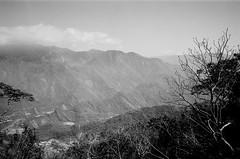山脈 (LS 's film world) Tags: leica m3 voihtlander colocr skopar 21mm f4 rollei rpx 25 bw mountain 霧台 阿禮