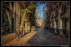 Antwerp_Belgie (ferdahejl) Tags: antwerp belgie dslr canondslr canoneos800d wijngaardstraat