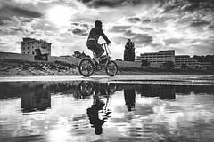 Grimmershörn (TS_1000) Tags: cuxhaven grimmershörn spiegelung reflexion sw bnw street streetphotography olympus wasser nordsee küste nordseeküste fahrrad bike neueliebe radweg doppelthältbesser double