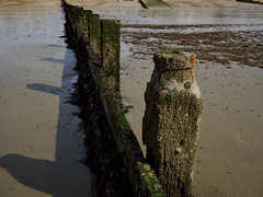 Wooden Groyne (DaveC...) Tags: lumixg80 lumixvario1260mm wooden groyne breakwater seaweed sand beach lowtide barnicles limpets shadows
