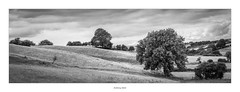Hills and trees (AnthonyCNeill) Tags: landscape panoramica panorama view paisaje vista grüne outdoor countryside campo campagne trees fields hills clouds black white blanc noir blanco negro schwarz weiss sky