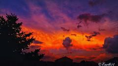 Gray morning so here is another shot from last nights sunset! (Edale614) Tags: sunset sunsetsaroundtheworld dusk naturelovers nature photography photo photooftheday picoftheday columbus ohio sky earl614 explore exploreohio
