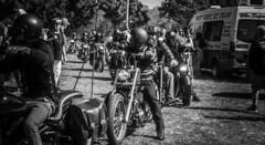 Bikers (Lisa M / /) Tags: bike bikes biker bikers show bikeshow bikeclub mc morotcycleclub rider riders motorbikesmotorcyclesopen toall nikon nikond5100 nikonaustralia nikondslr
